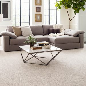 White Living room carpet | Pucher's Decorating Centers