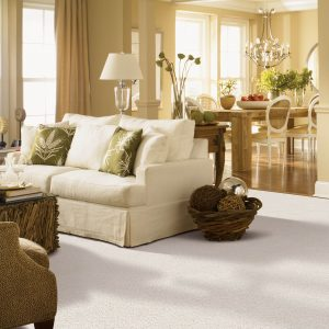 White carpet at living room | Pucher's Decorating Centers