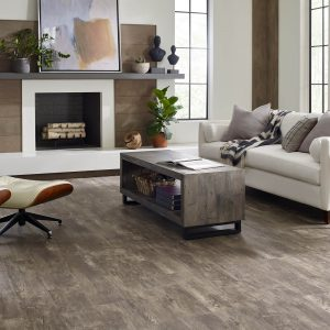 Paramount plus vinyl flooring | Pucher's Decorating Centers