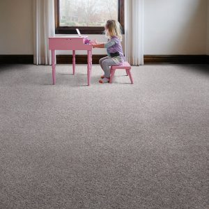 Carpet design | Pucher's Decorating Centers