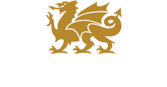 Cambria | Pucher's Decorating Centers